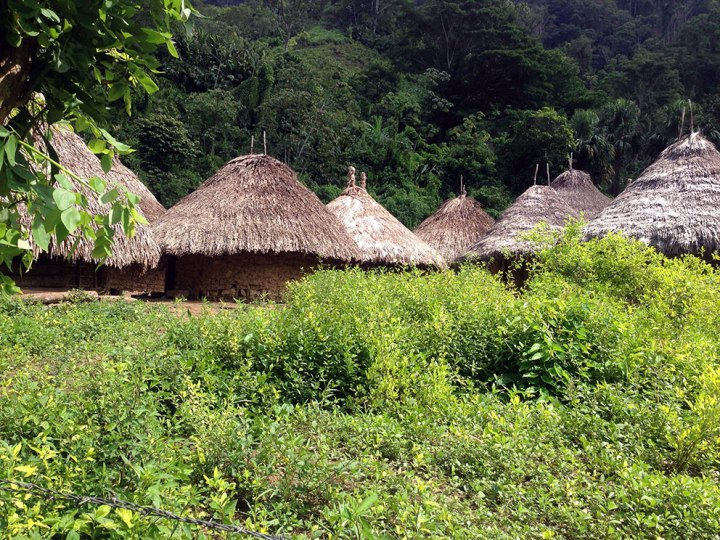 frontier-free-drifting-ciudad-perdida-indigenous-houses