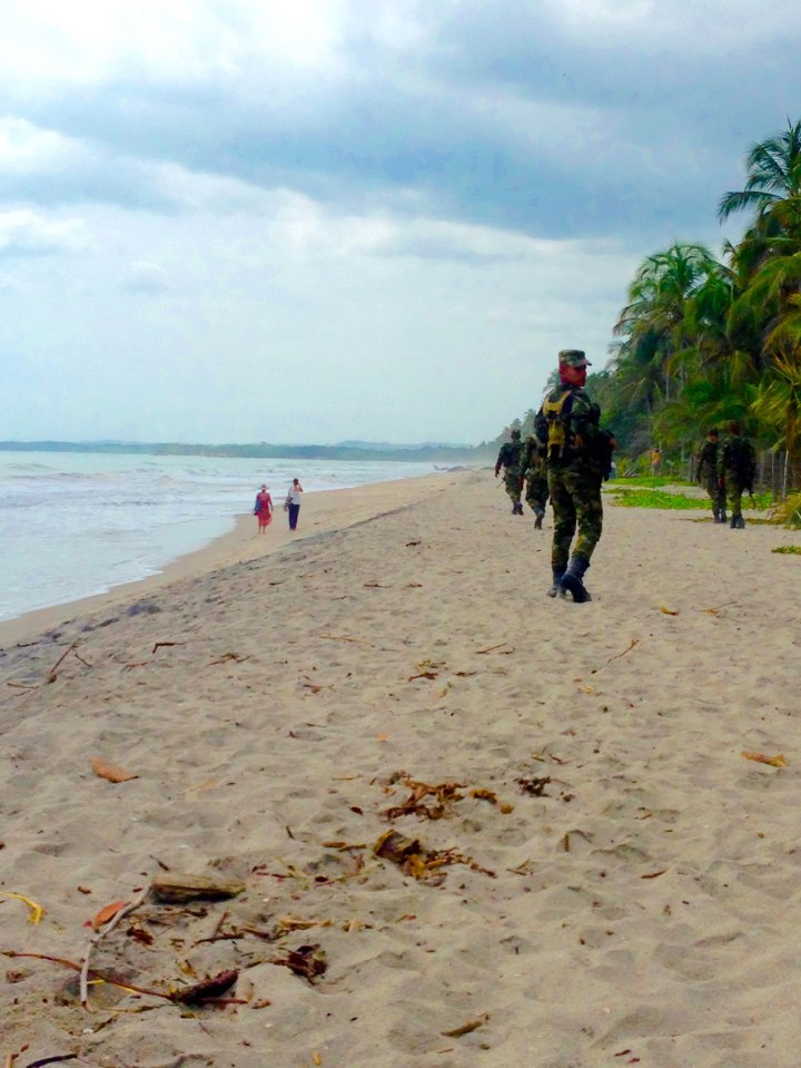 frontier-free-drifting-palomino-soldiers-like-the-beach-too