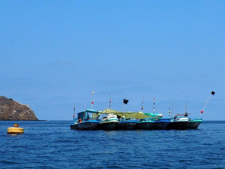 frontier-free-drifting-isla-de-la-plata-blats-in-a-line