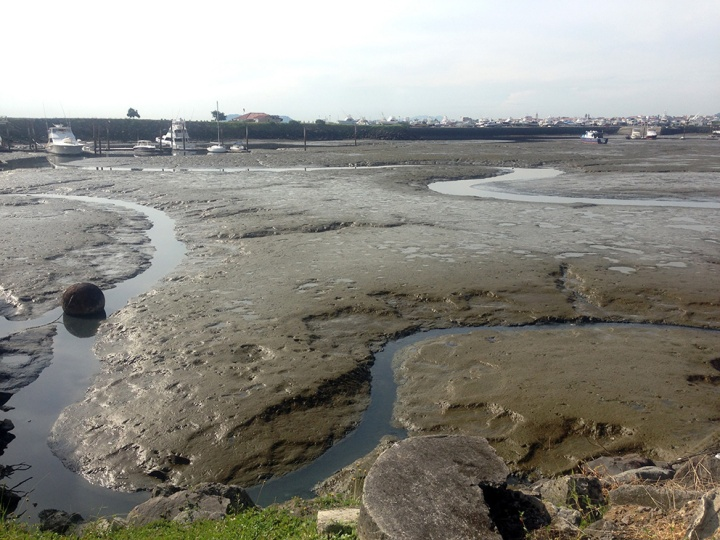 frontier-free-drifting-panama-harbour-low-tide