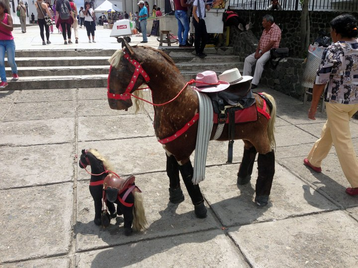 frontier-free-drifting-popayan-colombia-horse-rides