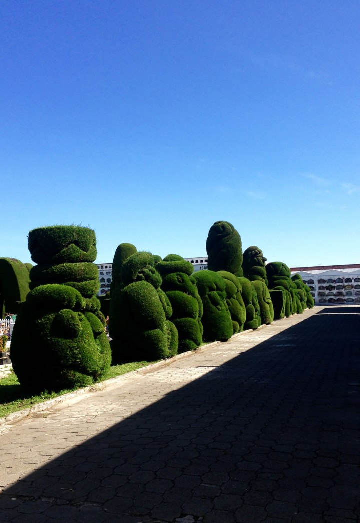 frontier-free-drifting-tulcan-cemetery-ecuador-hedge-sculpture-line