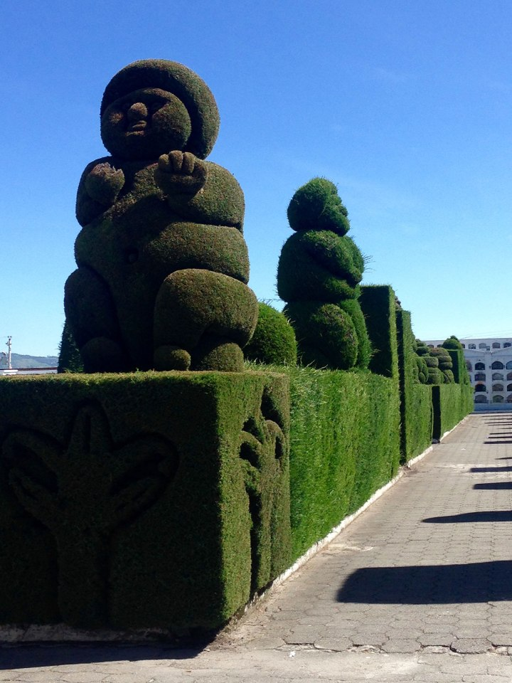 frontier-free-drifting-tulcan-cemetery-hedge-sculpture