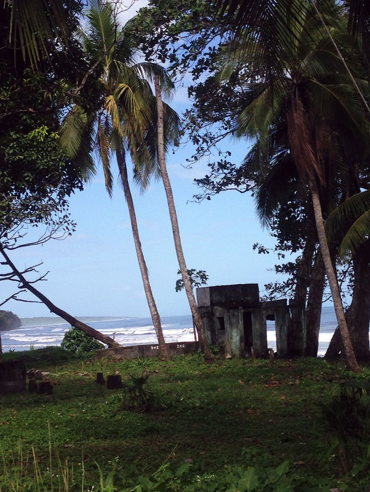 Frontier-Free-Drifting-Cahuita-Abandoned-Shelter-in-the-Trees