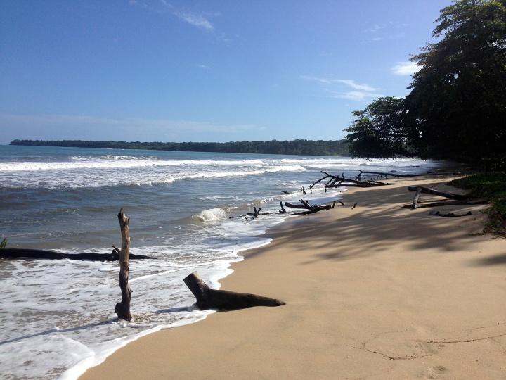Frontier-Free-Drifting-Cahuita-Beach