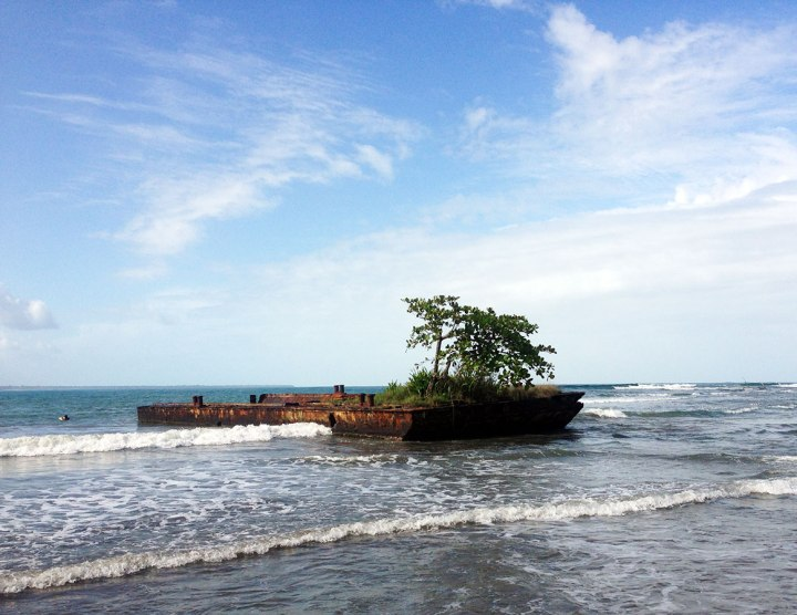 Frontier-Free-Drifting-Tree-On-Boat-Puerto-Viejo